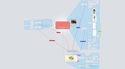 Mind Map: Mummification and economy in Ancient Egypt