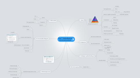 Mind Map: Kap. 9  Købsadfærd på konsumentmarkedet