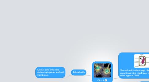 Mind Map: CELLS