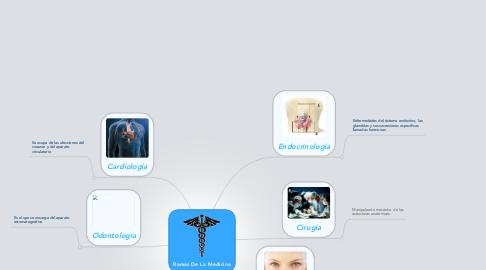 Mind Map: Ramas De La Medicina
