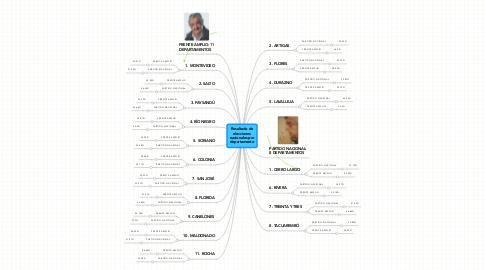 Mind Map: Resultado deeleccionesnacionales pordepartamento