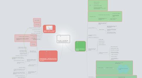Mind Map: TLE STMG -- LES EPREUVESCERTIFICATIVES EN TLE
