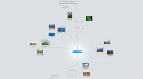 Mind Map: The Worlds Biomes