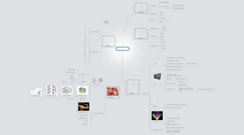 Mind Map: Næringstoffer