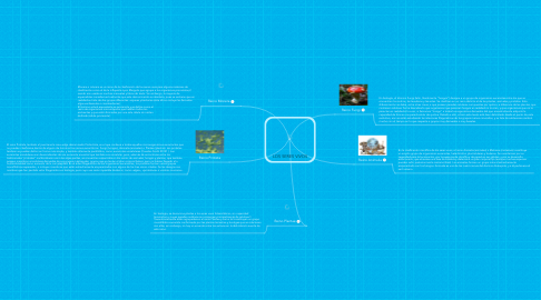 Mind Map: LOS SERES VIVOS
