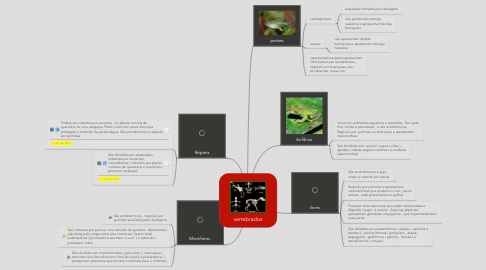 Mind Map: vertebrados