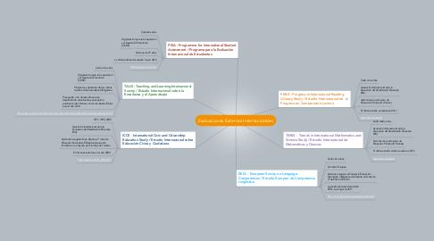 Mind Map: Evaluaciones Externas Internacionales