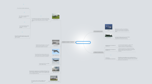 Mind Map: TRENES DE ATERRIZAJE