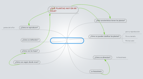 Mind Map: LAS PLANTAS DE MI  COLE