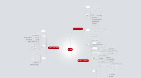 Mind Map: NSVL