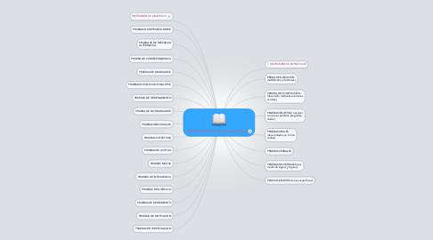 Mind Map: INSTRUMENTOS DE EVALUACION