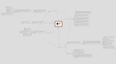 Mind Map: EL DUOPOLIO