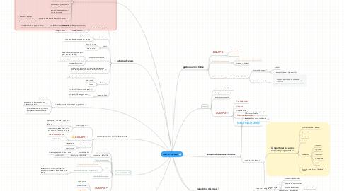Mind Map: PROJET 20 ANS