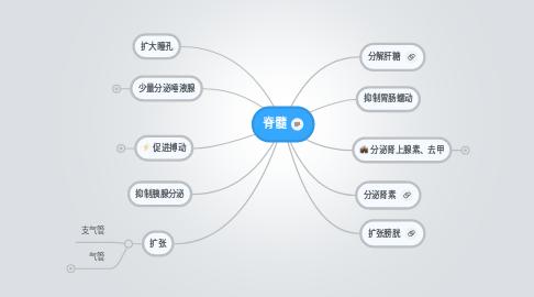 Mind Map: 脊髓