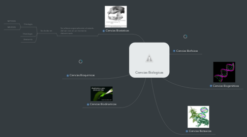 Mind Map: Ciencias Biologicas