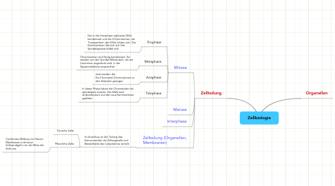 Mind Map: Zellbiologie