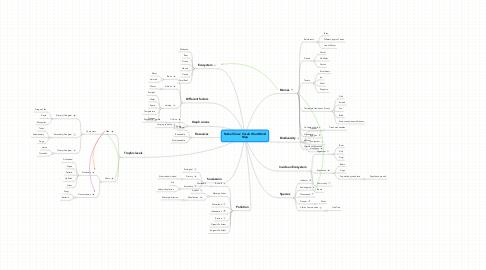 Mind Map: Rachel Sloss