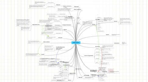 Mind Map: Vocab_Jeniffer