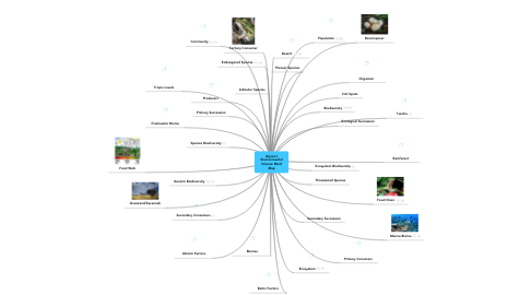 Mind Map: Alyssa's Environmental Science Mind Map