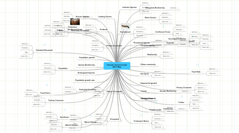 Mind Map: Hannah's Environmental Mind Map
