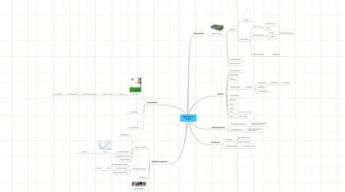 Mind Map: Rob Science