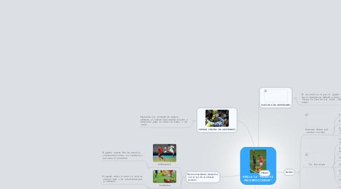 "Mind Map: REGLA 12  ""FALTAS E INCORRECCIONES"""