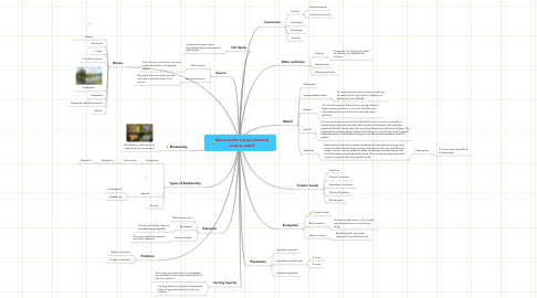 Mind Map: Marie Koder's environmental science web!!!