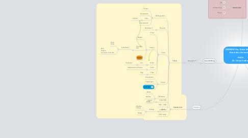 Mind Map: WIDMER Urs: Reise bis an der Rand des Universums  PHZH Dr. Heinz Hafner