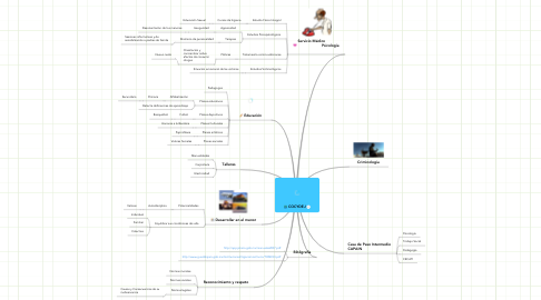Mind Map: COCYDEJ