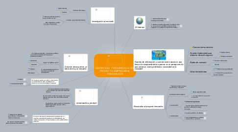 Mind Map: GESTACION  Y DESARROLLO DEL PROYECTO EMPRESARIAL INNOVADOR