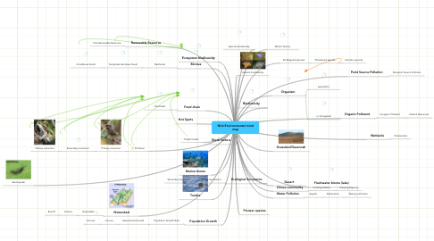 Mind Map: Nick Environmental mind map