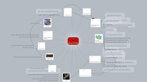 Mind Map: Master 2013