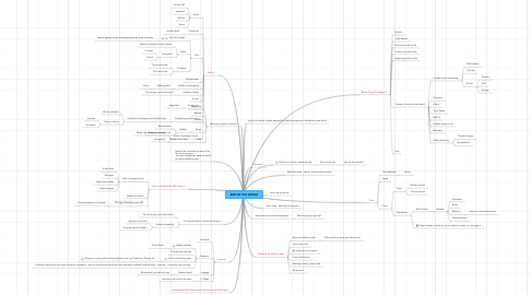 Mind Map: END OF THE WORLD