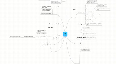 Mind Map: Tiimi2
