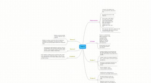 Mind Map: Tiimi 4