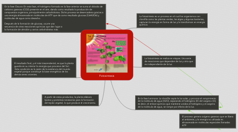 Mind Map: Fotosintesis