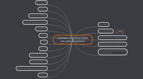 Mind Map: ENZYMER OG COFAKTORER- sæt orden i begreberne
