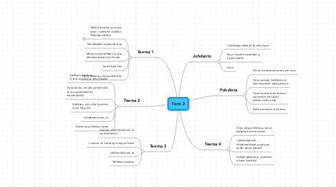 Mind Map: Tiimi 2
