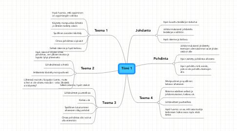 Mind Map: Tiimi 1