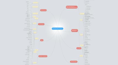 Mind Map: Netherlands Startup Ecosystem