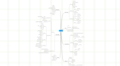 Mind Map: Rapport