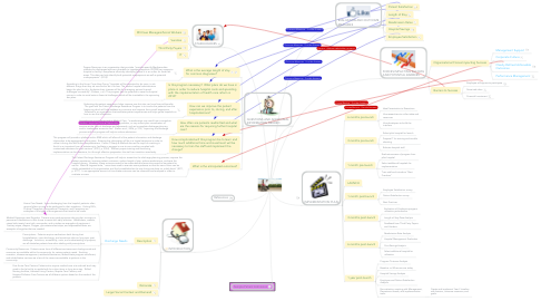 Mind Map: Patient Discharge Assistance Program - Danielle Friedman 2014