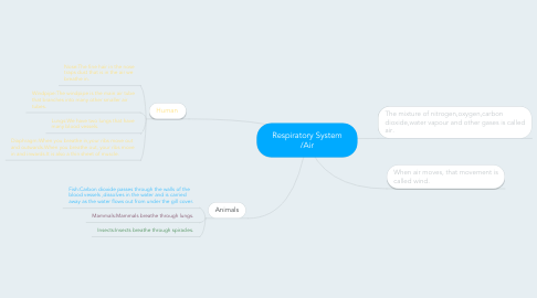 Mind Map: Respiratory System /Air