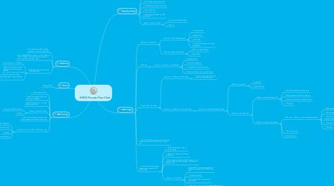 Mind Map: MEDS Process Flow Chart