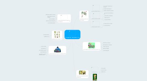 Mind Map: Лекарственные растения