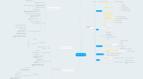 Mind Map: Проект Теxsan