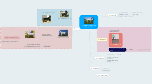 Mind Map: Liberty Ranch EGB Bombay *B