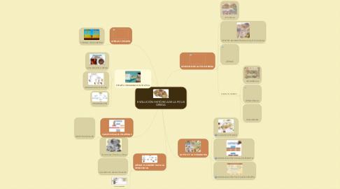 Mind Map: EVOLUCIÓN HISTÓRICA DE LA POLIS GRIEGA