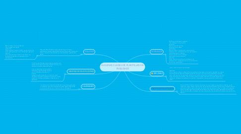 Mind Map: ALGUNAS CLASES DE PLANTILLAS DE PUBLISHER