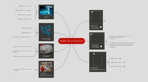 Mind Map: Análisis de los alimentos